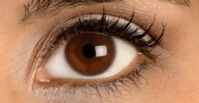Irisdiagnostik