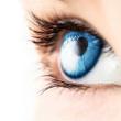 Sista chansen – Irisdiagnostik kurs start 13 oktober